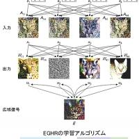 2016/06/29 並列計算で感覚情報を分解