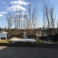 2016/02/06 亀山PAおよび安濃SAにおいて、県産花き花木を使用した屋外装飾を行います