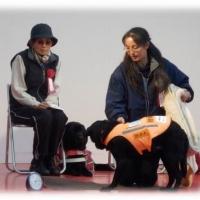 2016/12/06 身体障害者補助犬について
